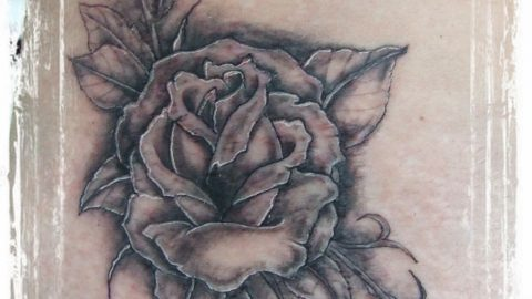 roza rose flower tattoo busko zdroj